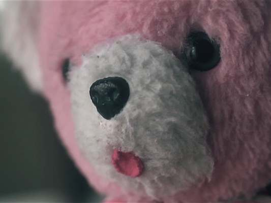Kortfilm: The Life of a Toy Bear